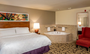Suite - Holiday Inn Convention Center Stevens Point