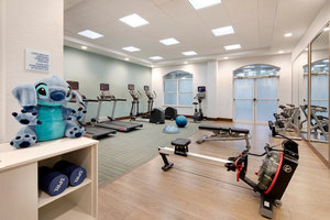 Fitness/ Exercise Room - Holiday Inn Express Hotel & Suites Maingate East Kissimmee